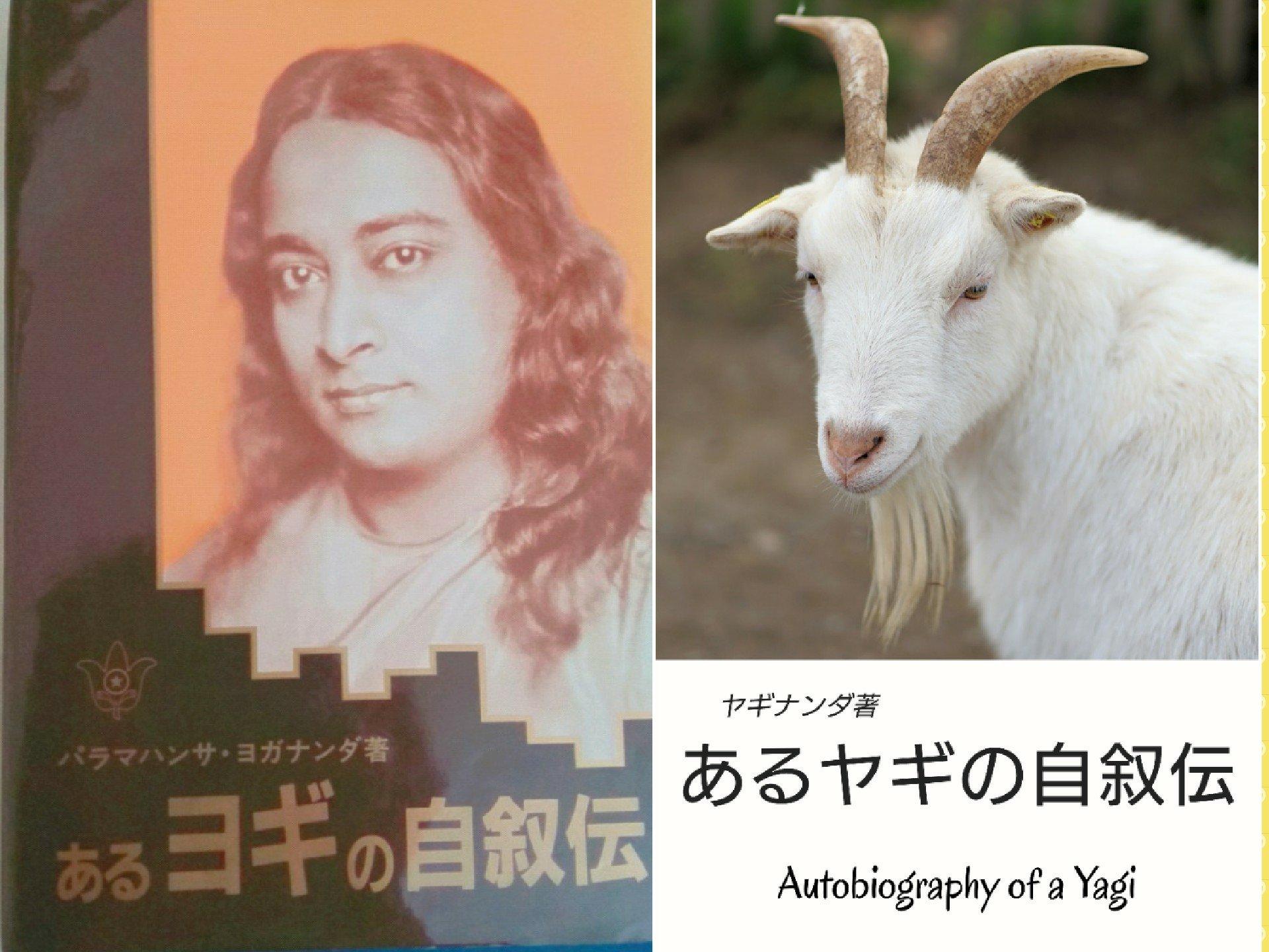 あるヤギの自叙伝 1