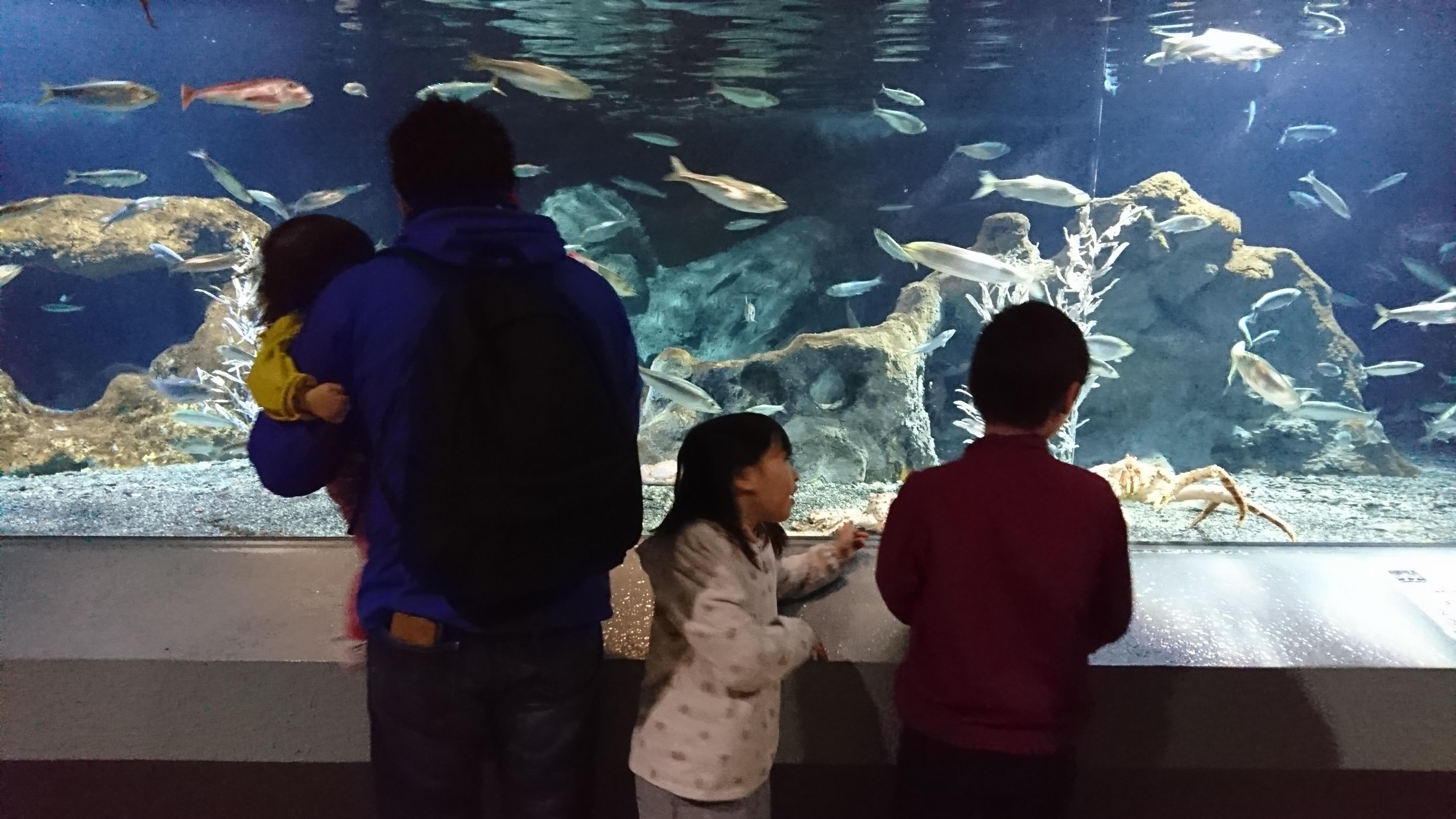 ゴールデンウィークの思い出 おたる水族館